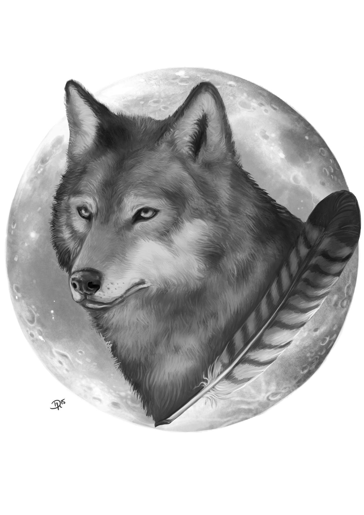 JPG_WolfFalkenfeder